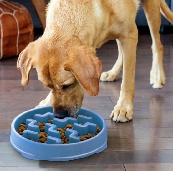 prezenty dla psa, miski