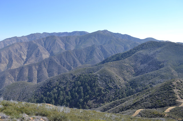 McKinley and San Rafael