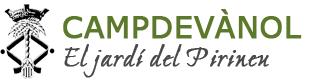 Ajuntament de Campdevànol