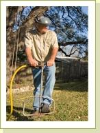 tree fertilizing for Austin, Texas