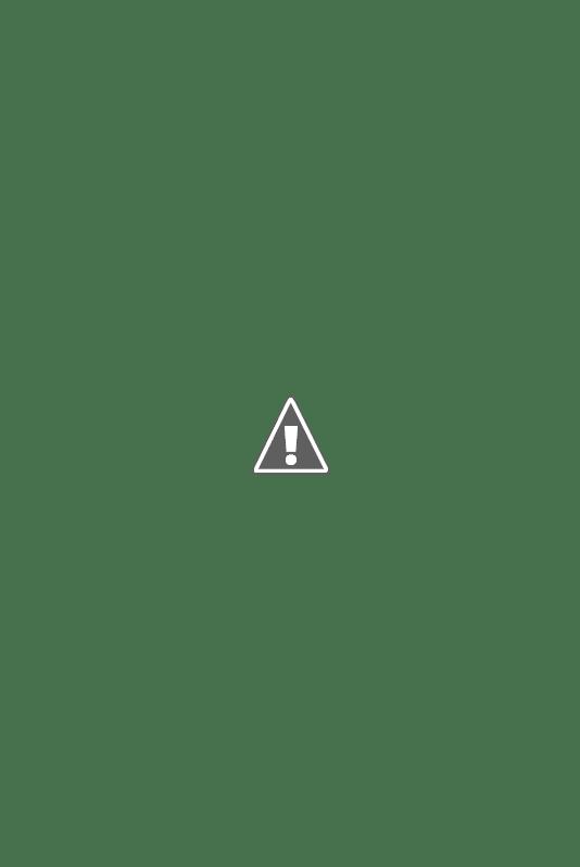 Flèche de l'église Notre-Dame d'Annecy