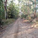 following the dirt roads (59318)