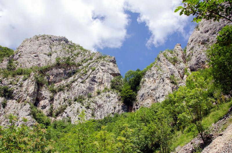 Zona calcaroasa in M-tii Trascau