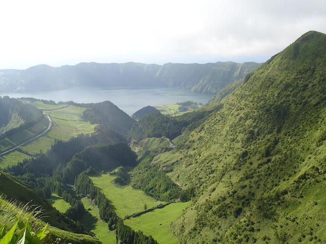 Açores- Natureza viva DSC05605