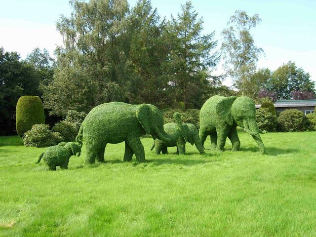 Скульптуры из растений. 11 фото