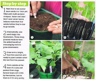 Haxnicks Garden Products in the Press