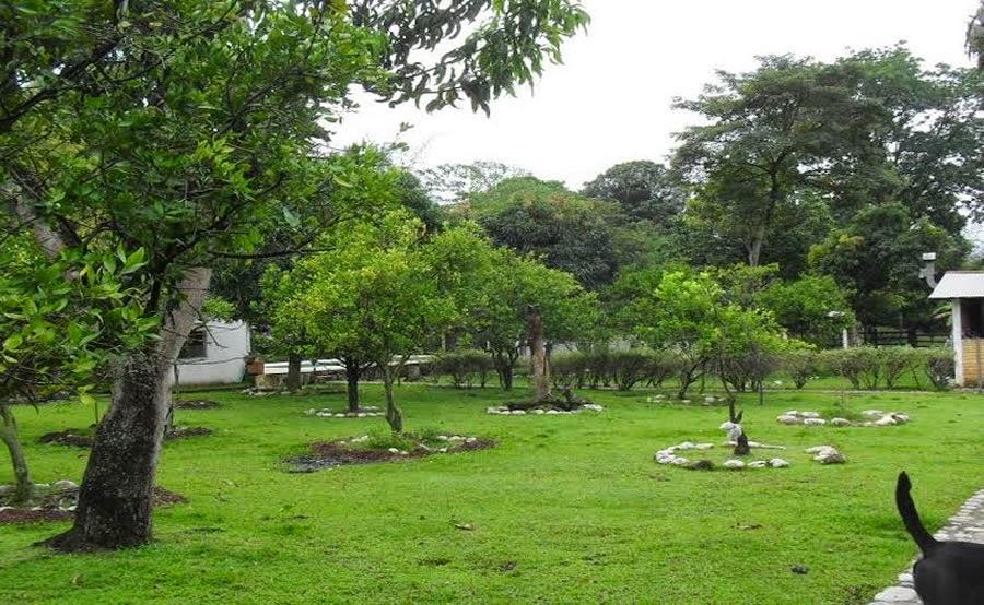 Lote Ubicado en Guatiguara detras de la Planta de Postobon S.A.
