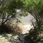 Henry Head Track near Botany Bay National Park (17421)