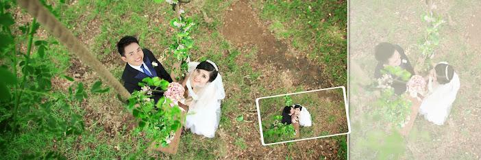 Địa điểm chụp ảnh cưới đẹp hài hòa cùng thiên nhiên thơ mộng
