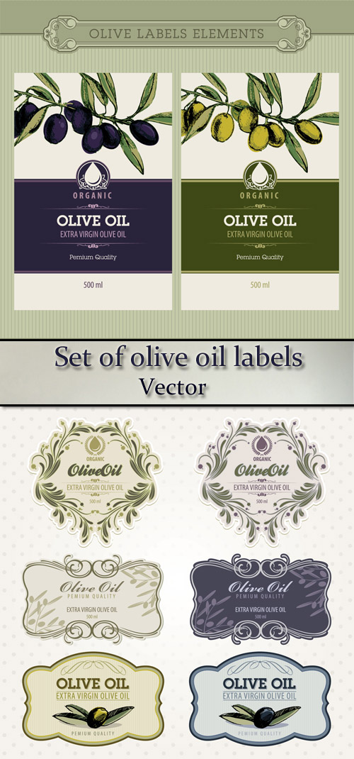 Stock: Set of olive oil labels