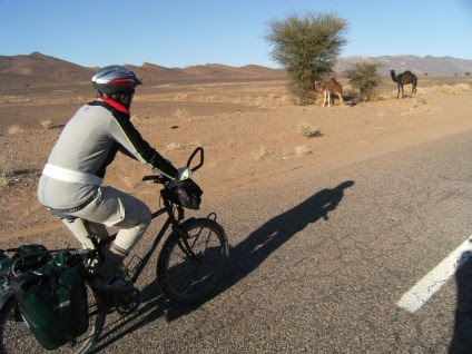 Miri on the Bike und Dromedare an der Straße zwischen Alnif und Rissani