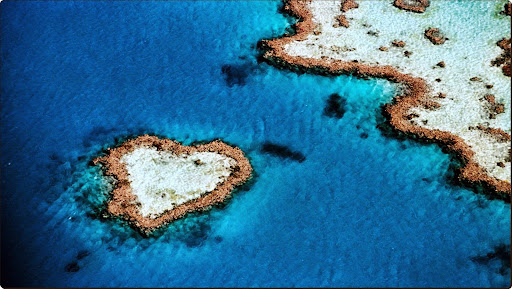 Aerial of Heart-Shaped Reef, Hardy Reef, Near Whitsunday Islands, Queensland, Australia.jpg