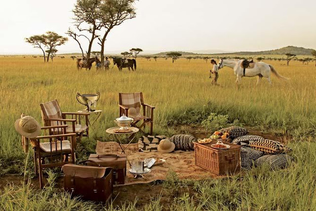 Roar Africa