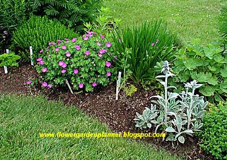 Flower Garden Planner Expert Planning A Garden