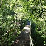Passing the Moores Creek bridge (134557)