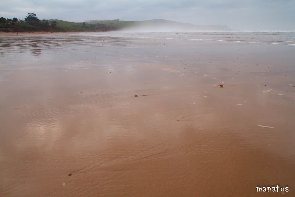 manatus playa