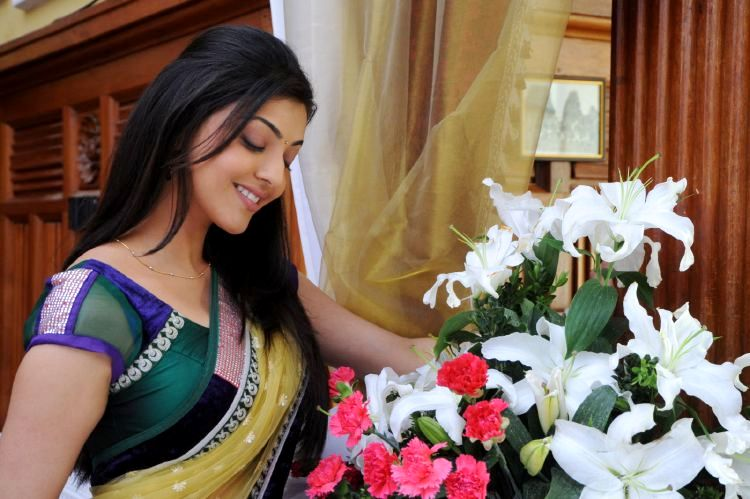 Actress Kajal Looiking Goegeous In Saree Stills