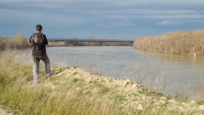Fuentes de Ebro