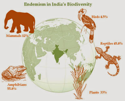 biodiversity in india Biodiversity of india: as per available data, the varieties of species living on the earth are 1753739 out of the above species, 134781 are residing in india although surface area of india is 2% of the earth's surface.