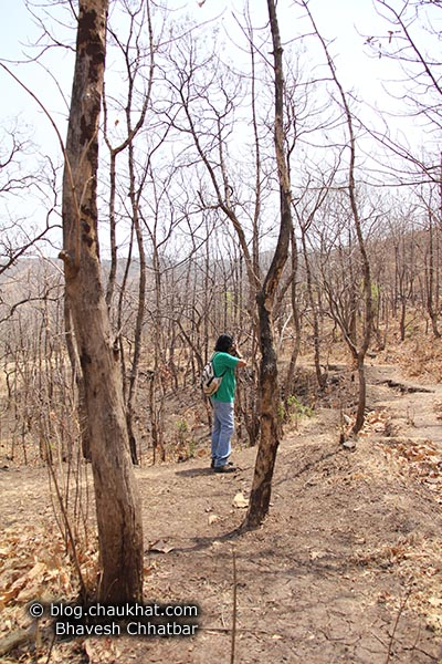Bhavesh doing photography while going towards Sinhgadh Valley during the hardest time of the year, which is the month of May