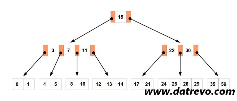 Gli alberi B, struttura efficiente con sottoalberi variabili
