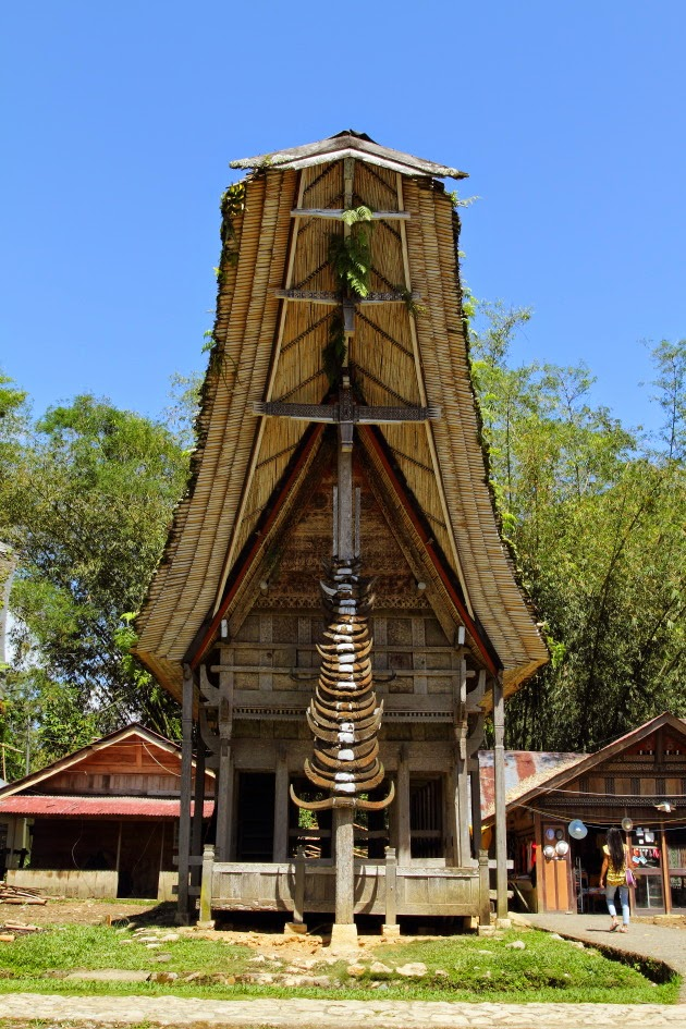 A traditional Tana Toraja house front lined with buffalo horns