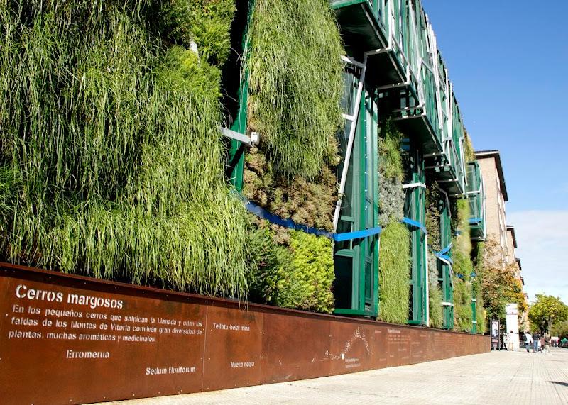jardín vertical Vitoria-Gasteiz - Vista del zócalo de acero corten