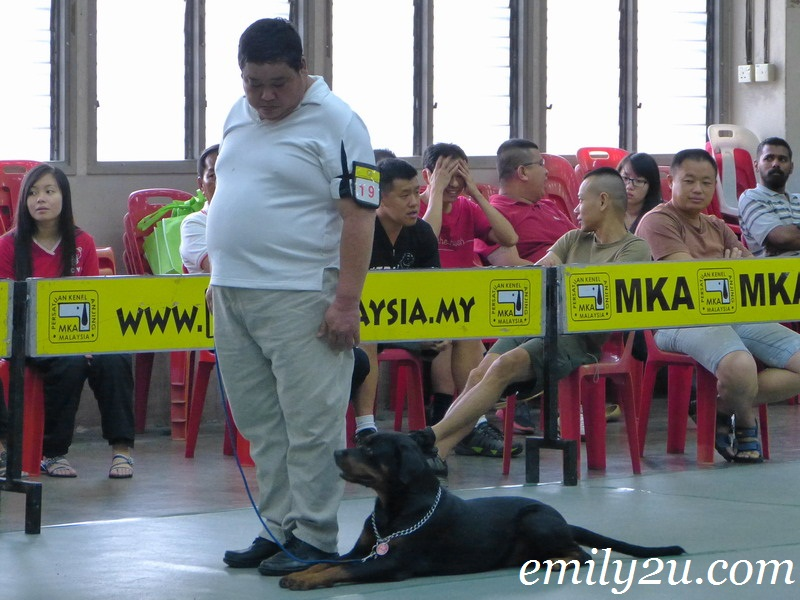 MKA Obedience Trials