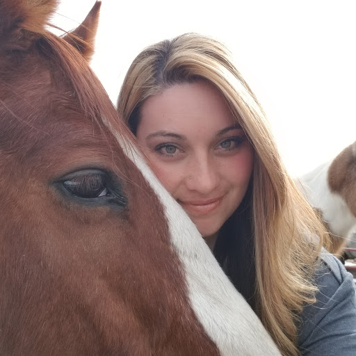 Amazing Day On Hay Farm 1.1.11 APK By Foranj Details