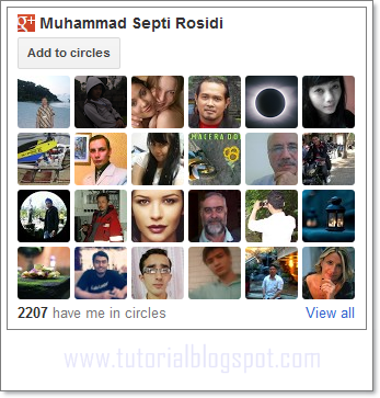 Google+ Followers Gadget,widget Google+ Followers,widget google plus,google plus,google+,followes widget,