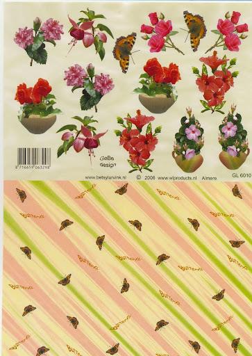 GL 6010 betsy lurvink vlinderenvelop.jpg