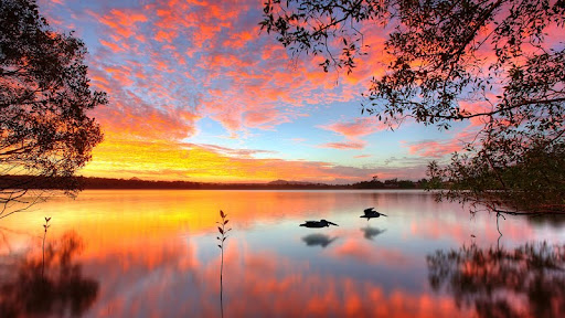 Lake Doonella, Noosa Heads, Queensland, Australia.jpg