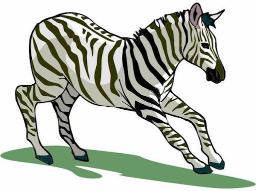 zebra_juni09%252520%2525282%252529.jpg