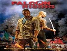 فيلم Falcon Rising