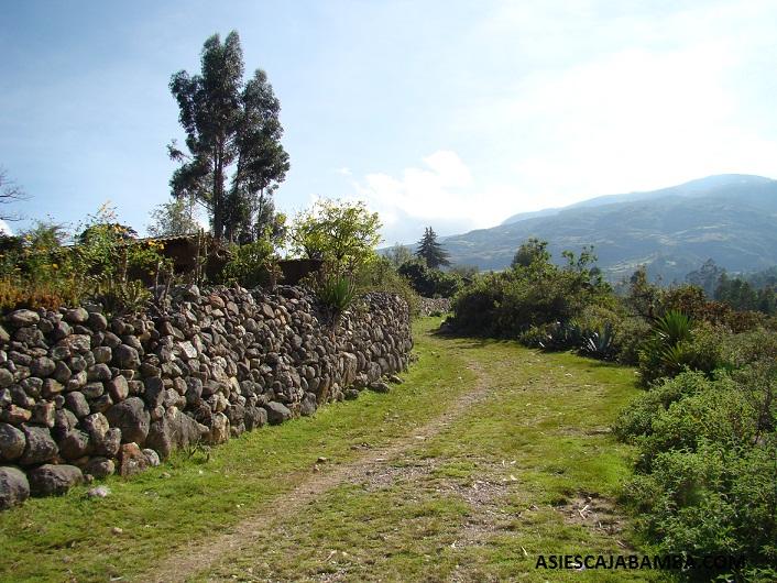 Camino del caserío Campana - Cajabamba