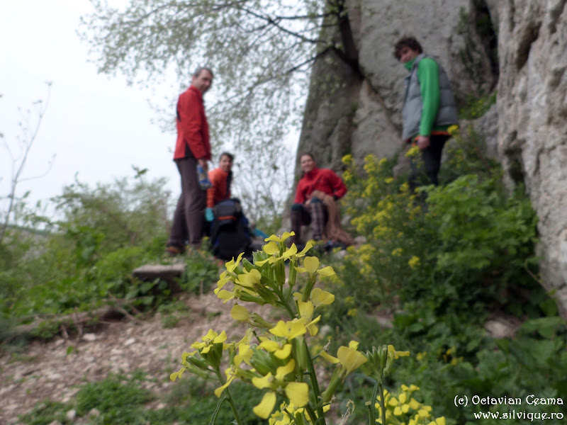 2014.04.05 - Escalada la Veliko Tarnovo
