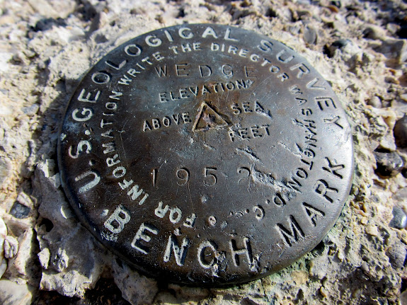 WEDGE survey marker on Little Cedar Mountain