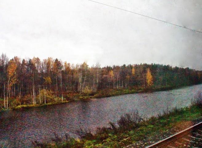 A stream by the railway tracks