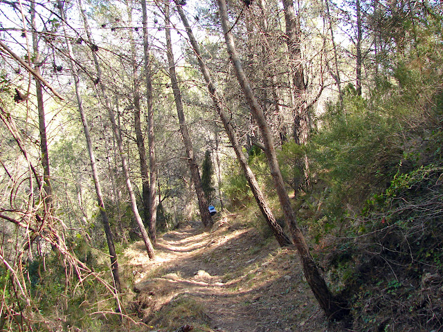 Senderismo Suera Alta - Castillo de Mauz