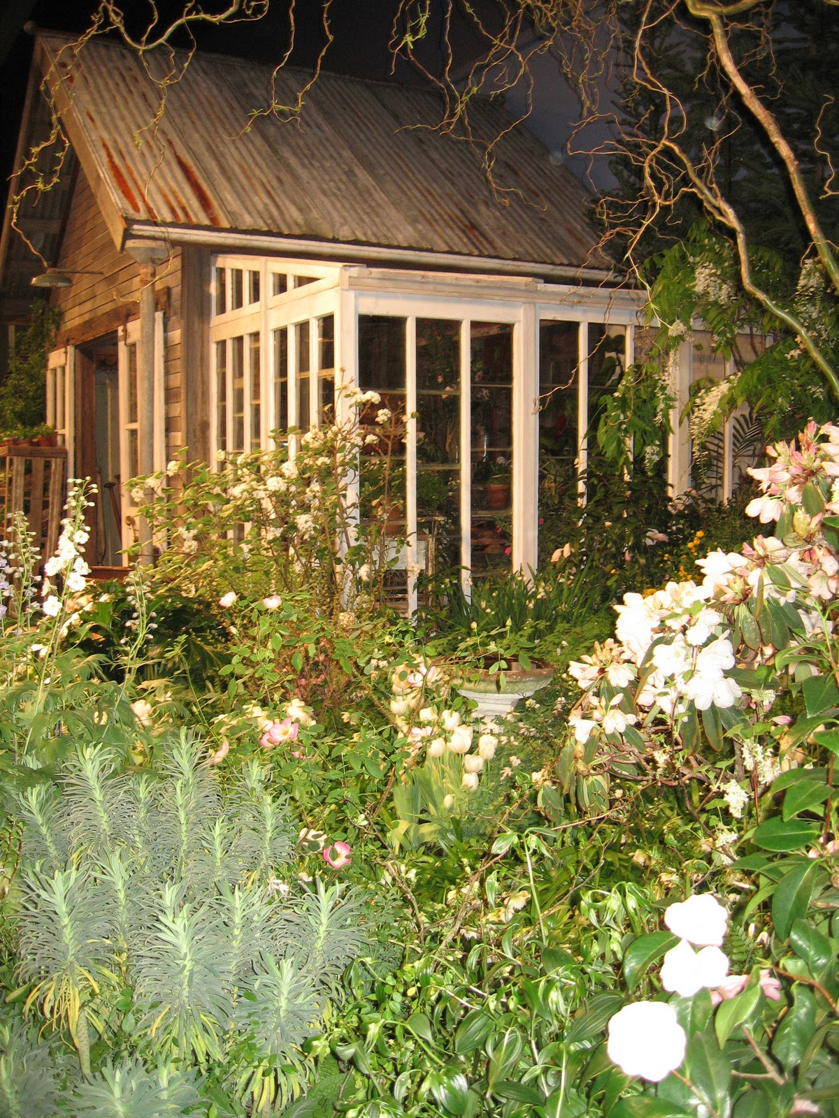 Polka Dot Galoshes: garden shows & mischeivious paths....