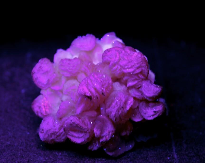 Colección de Minerales Fluorescentes _DSC4523
