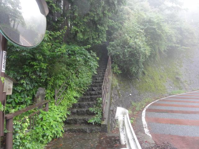 橿木坂(かしのきざか) 東海道五十三次