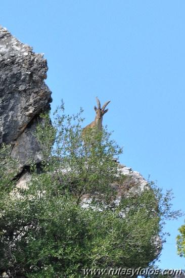 Embalse del Fresnillo - Tajo de la Ermita