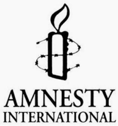 amnesty international being hoodwinked by fiji informants