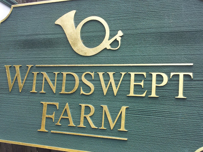 sandblasted sign - windswept farms