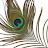 Robin George avatar image