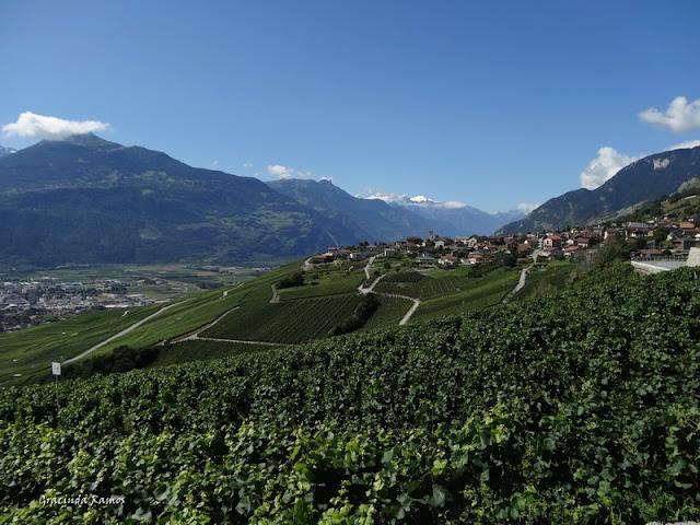 passeando - Passeando pela Suíça - 2012 - Página 9 DSC02085