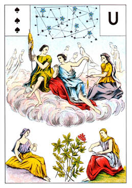 Grand jeu de Mme Lenormand : tirage 5 cartes 'évolution carrière' 44%2520pique%25203