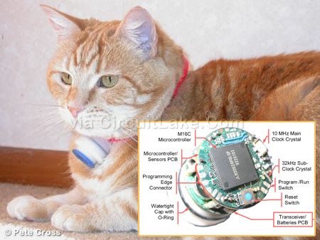 Data Logger for Pet