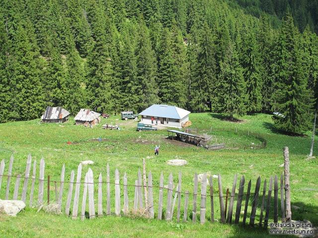 Retezat Trail Race - stana din Buta